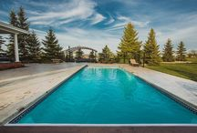 Pools / Dreamy swimming pools