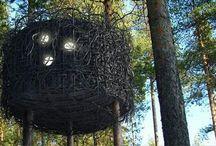 """Отель на деревьях / На прошлой недели мы уже Вам рассказывали об отели на деревьях """"Tree Hotel""""."""