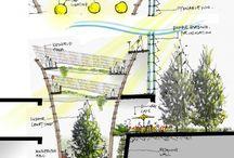 Architecture | Sketch / Architect Sketch