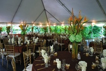 Caribbean Wedding / 10.30.10 Wedding Reception & Ceremony - Private Residence