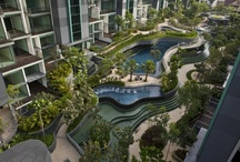 residence landscape