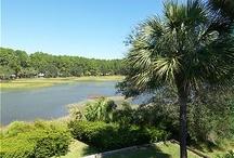 South Carolina  / by Vacation Travel