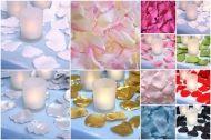 Rose petals / Satin rose petals (www.lintland.nl)