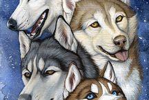 Husky/wolf art