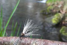 Kebari and Flies
