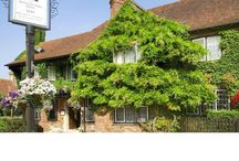 Best hotels in the New Forest / Best hotels in the New Forest national park reviewed on luxury travel reviews website ALadyofLeisure.com luxury hotels luxury holidays New Forest vacations