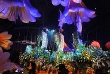 flower exhibitions