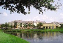 Condos for Sale & Lease @ THE ARBORS CONDOMINIUMS / Luxury Condominiums for sale or lease! CALL (813) 843-8311