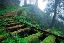 Paths to... / by Signe Blum
