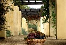 Impressive Wineries !!!!