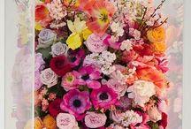 Flower Wedding Ideas / by @MadeWithLoveDesigns Clare Fletcher