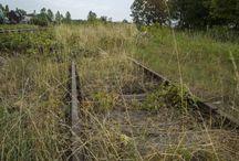 """Mysterieuze """"nazitrein"""" gevonden in Polen"""