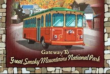 Travel: Knoxville, TN / Fly into Knoxville and drive to Pigeon Forge and then onto Gatlinburg.  It's only a one hour drive from Knoxville to Gatlinburg.  The best time to travel is September - November. / by Kathy Sullivan