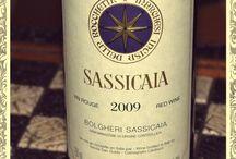 La cantina di tasso / Raccolta dei migliori vini