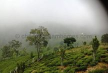 Hillstation Properties in India for sale / http://chennaidreamhomes.com/property-type/hillstation