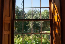 Windows with a view!
