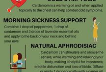 Cardamom / Anything and everything you need to know about Cardamom essential oil. Learn more on my blog @ www.thepricklypilotswife.com