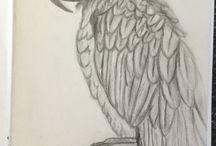 Charcoal Drawings ANIMAL