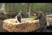 Suomi Finland 100 / Tauluun on koottu pieniä ja isoja ajatuksia ja huomioita satavuotiaasta Suomesta.