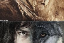 Line of durin