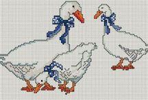 csirkék,tyúkok,kakasok,libák, kacsák