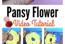 Pansy Video