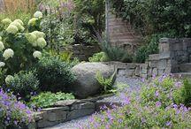Court yard gardens
