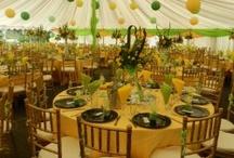 Zimbabwe weddings zimweddings on pinterest wedding decor wedding decor junglespirit Images