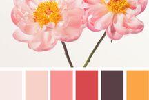 색 color / color
