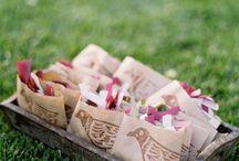 Confetti for wedding