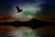 My Photo Manipulations/Art / Art and manipulations in various forms