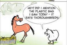 Ponyer