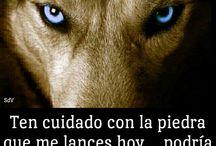 lobos poderoso