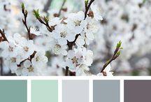 farby spalna