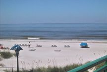 FL Vacation