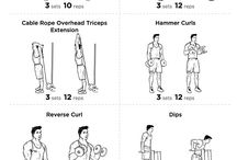 workout / body muscle