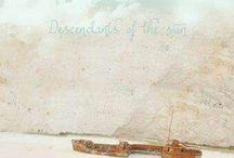 DOTS / Descendants of The Sun