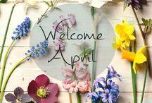 Hello months