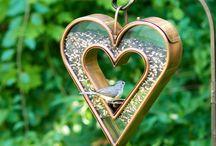 кормушки и домики для птиц