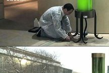 help regeneration okcigen in the air