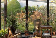 Ideas Architecture / Atrium, orangerie, space