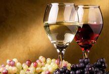 WINE / www.vino45.com