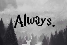 More and pottermore