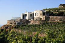 winery sikinos / wine#Sikinos#grecce#Island#vacatio#oia#santorini#folegandros#ios#summer#Aegean# Cyclades#wedding#decoration#sunset