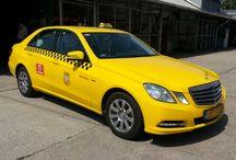 Taxifóliázás / Munkáink képekben