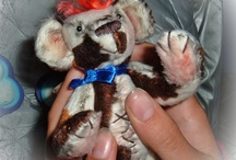 Teddy bear.... / Teddy bear...