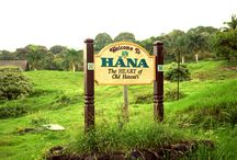 Road to Hana / Experience Paradise on Earth while venturing down Maui's Hana  Road.  / by Discover Hawaii Tours