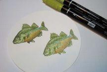 Cards - Fish
