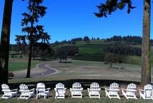 willamette valley OR wineries