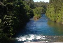 McKenzie River / Vacationing and recreating in the McKenzie River area of Oregon's Central Cascade Mountains